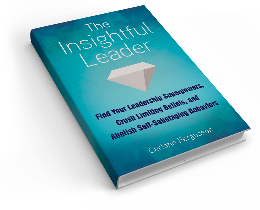 The Insighful Leader Book